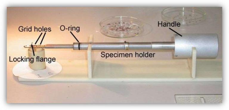 specimen holder